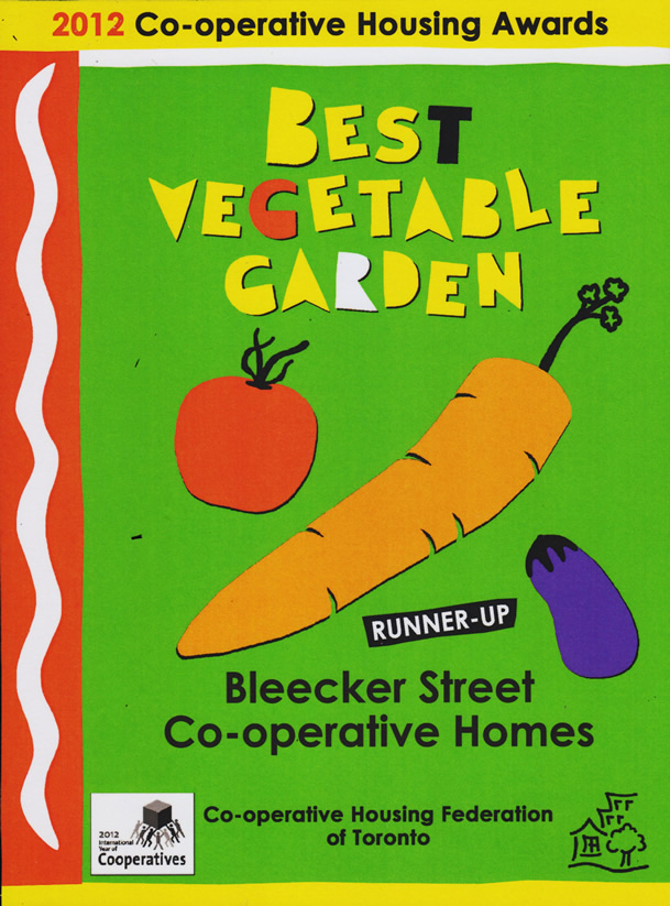 Vegetable Garden Award 2013