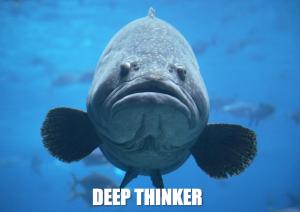 Grouper deep