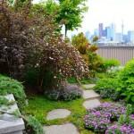 HughGarner-Rooftop-Garden-Cabbagetown